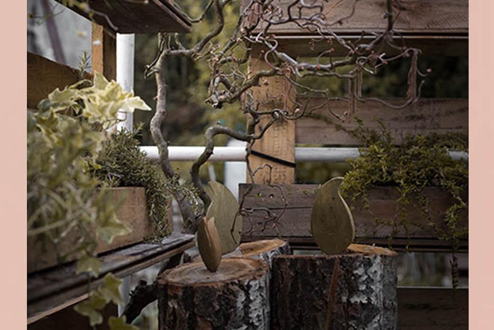 2_giardino_lacasetta